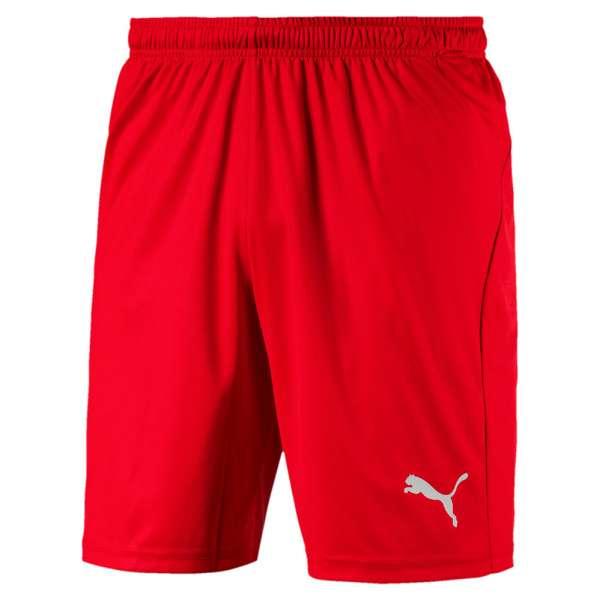 Puma LIGA Shorts Core KIDS - rot