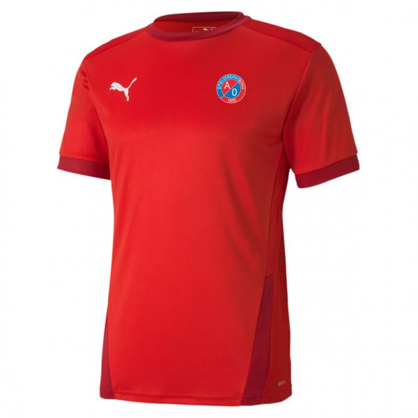 SV A/O Puma teamGOAL 23 Jersey - rot