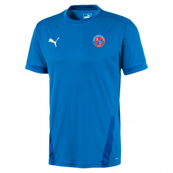 SV A/O Puma teamGOAL 23 Jersey - blau